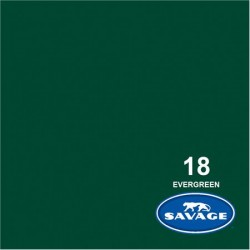 Savage Widetone Seamless Background Paper (#18 Evergreen)